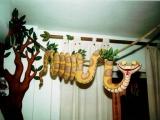 decorazione artistica serpente