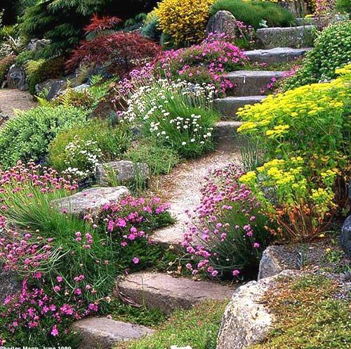 Garden Design For Sloped Garden Ideas: Servizi Completi Di Giardinaggio
