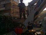 attrezzatura giardiniere per la potatura degli alberi